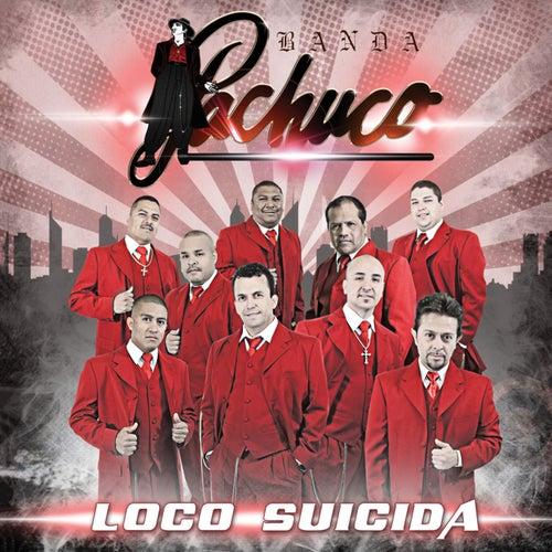 Loco Suicida by Banda Pachuco