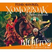 Xomorroak by Fermin Muguruza