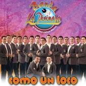 Como un Loco by Banda La Pirinola
