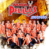 Secreto by Banda Pelillos