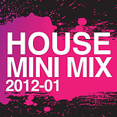 House Mini Mix 2012 - 01 by Various Artists