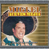 Tesoros De Coleccion - Miguel Aceves Mejia by Various Artists