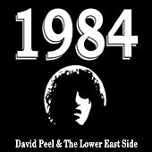 1984 by David Peel and The Lower East Side