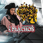 El Próximo Tonto by Banda Machos