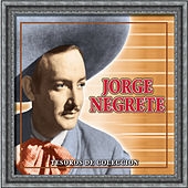 Tesoros De Coleccion - Jorge Negrete by Various Artists