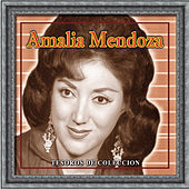 Tesoros De Coleccion - Amalia Mendoza by Various Artists