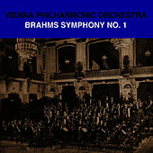 Brahms Symphony No. 1 by Vienna Philharmonic Orchestra