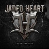 Common Destiny by Jaded Heart