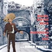 Canta Los Huapangos De Oro De Ruben Fuentes by Various Artists