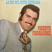 La Voz Que Ud. Esperaba by Vicente Fernández