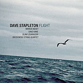 Flight by Dave Stapleton