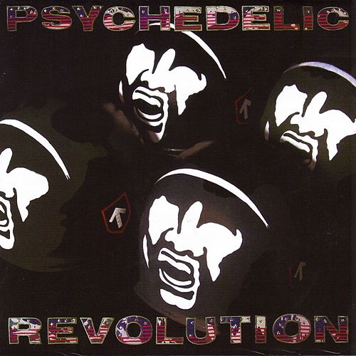 Psychedelic Revolution by Julian Cope