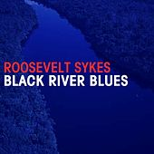 Black River Blues by Roosevelt Sykes