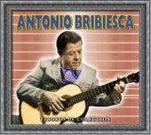 Tesoros de Coleccion - Antonio Bribiesca by Antonio Bribiesca