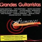 Grandes Guitarristas Flamencos by Various Artists