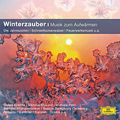 Winterzauber von Various Artists
