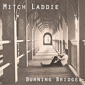 Burning Bridges by Mitch Laddie