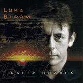 Salty Heaven by Luka Bloom