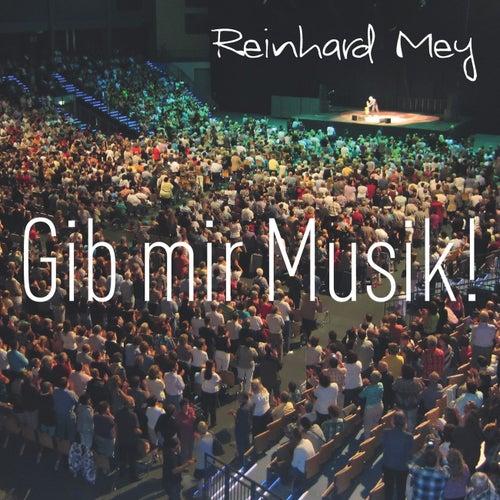 Gib mir Musik von Reinhard Mey