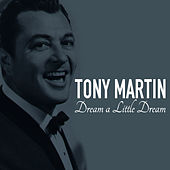 Dream A Little Dream by Tony Martin