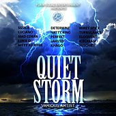 Quiet Storm Riddim by Various Artists