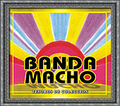 Tesoros De Coleccion - Banda Macho by Banda Machos