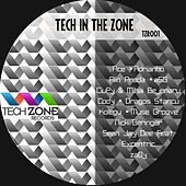 Tech In The Zone by Various Artists