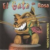 El Gato De Rosa by Various Artists
