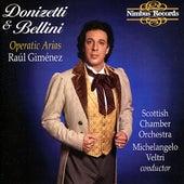 Donizetti & Bellini: Operatic Arias by Raúl Giménez