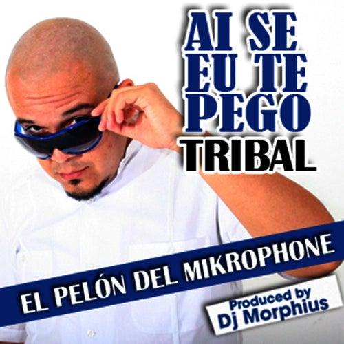 Ai Se Eu Te Pego - Single by El Pelón Del Mikrophone