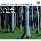 Im Schatten des Waldes (Choral music by Robert Schumann) von Various Artists