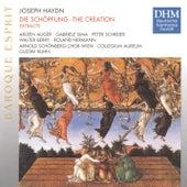 Haydn: Die Schöpfung (Excerpts) von Various Artists