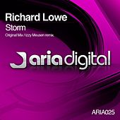 Storm by Richard Lowe