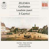 Zelenka: Confitebor, Laudate pueri & 3 Capricci von Various Artists