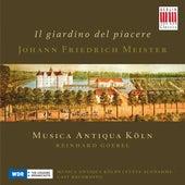 Meister: Sonatas nos. 2, 4, 5, 6, 10 & 11 (Il giardino del piacere) by Musica Antiqua Köln