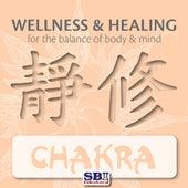 Wellness & Healing ..... Chakra by Ravi Chawla