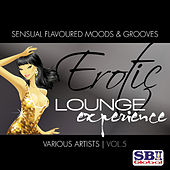 Erotic Lounge Experience Vol. 5 by Various Artists