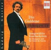 Trumpet and Corno da Caccia Concert - Sprenger / Hertel / Telemann / Haydn / Mozart / Torelli by Various Artists