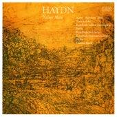 HAYDN, J.: Mass in D minor,