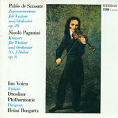 Violin Music - PAGANINI, N. / SARASATE, P. / DVORAK, A. / HUBAY, J. (Voicu, Morbitzer) by Various Artists