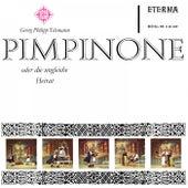 Telemann: Pimpione oder Die ungleiche Heirat (Sung in German) by Various Artists
