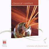 Brahms, Chopin, Schubert, Schumann, Spohr, Mozart, Bartholdy, Haydn & Beethoven: Classical comfort by Various Artists