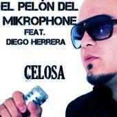 Celosa (feat. Diego Herrera) - Single by El Pelón Del Mikrophone