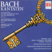 BACH: Cantatas  BWV 106, 31 & 66 by Various Artists