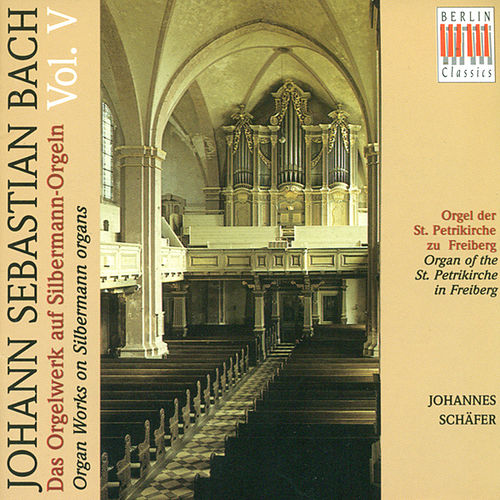 Bach: Organ Music on Silbermann Organs, Vol. 5 - BWV 690, 691a, 694-713 by Johannes Schäfer