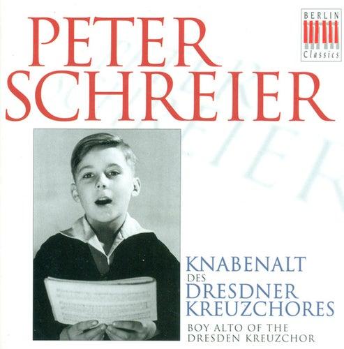 Bach, Cornelius, Mausberger & Schütz: Vocal Music by Various Artists