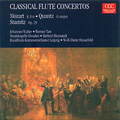 MOZART, W.A.: Flute Concerto No. 2 / QUANTZ, J.J.: Concerto for Flute and Bassoon / STAMITZ, C.: Flute Concerto, Op. 29 (Tast, Walter, Konigstedt) by Various Artists