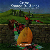 Celtic Strings & Wings by Ben Tavera King