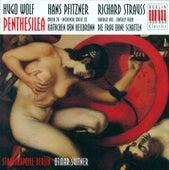 WOLF, H.: Penthesilea / PFITZNER, H.: Das Kathchen von Heilbronn / STRAUSS, R.: Fantasy (Berlin Staatskapelle, Suitner) by Various Artists