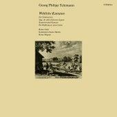 Telemann: Cantatas (Secular) - TWV 20:37, 48, 57, 66 by Various Artists